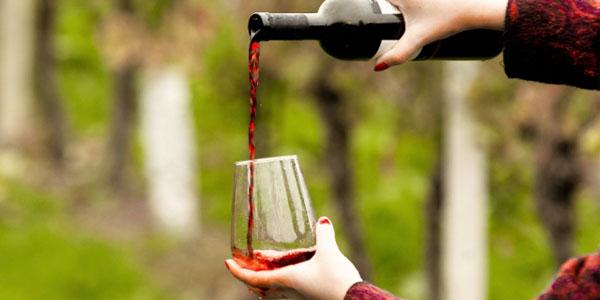 赤ワインとブドウ畑