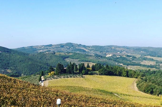 イタリアの赤ワイン「キャンティクラシコ」のゾーンとは