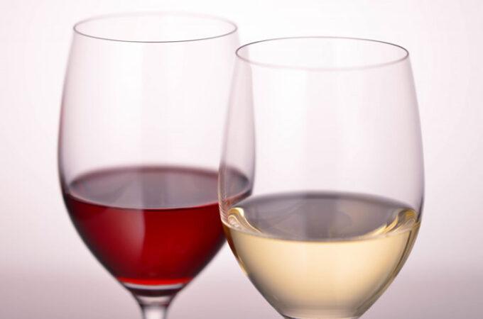 ワインの基本と楽しみ方を学ぶ