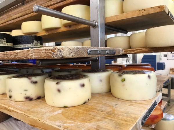 チーズ工場、ピスタチオ入りペコリーノ